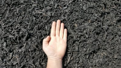 Black Mulch Hand