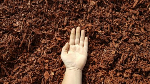 Red Mulch Hand