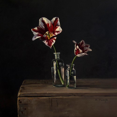 """""""Rembrandt Tulips"""" 20x20, oil on linen, ID# 16641"""