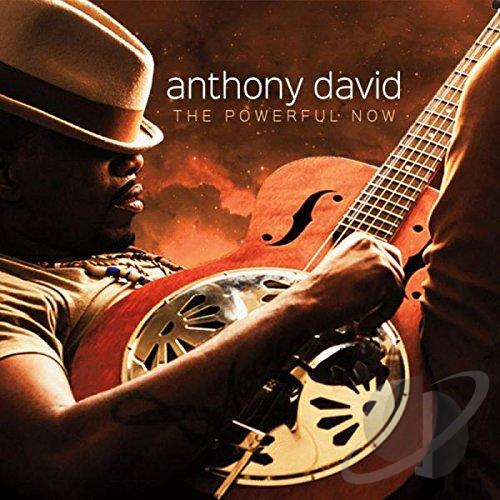 Anthony David - The Powerful Now