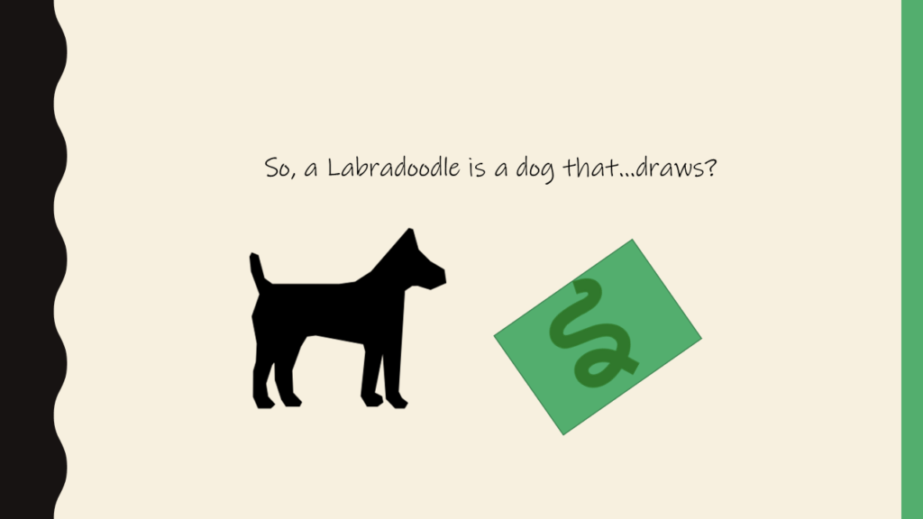 Image of a Labrador and the Image that he drew - he is a Labradoodle