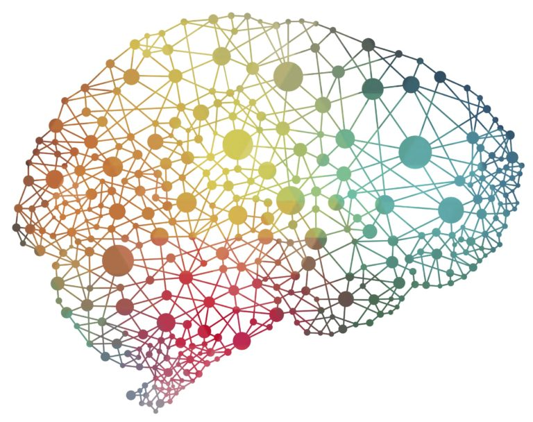 diet and brain health are linked