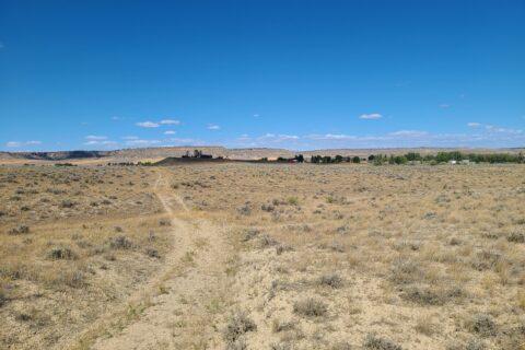 sage hill 4
