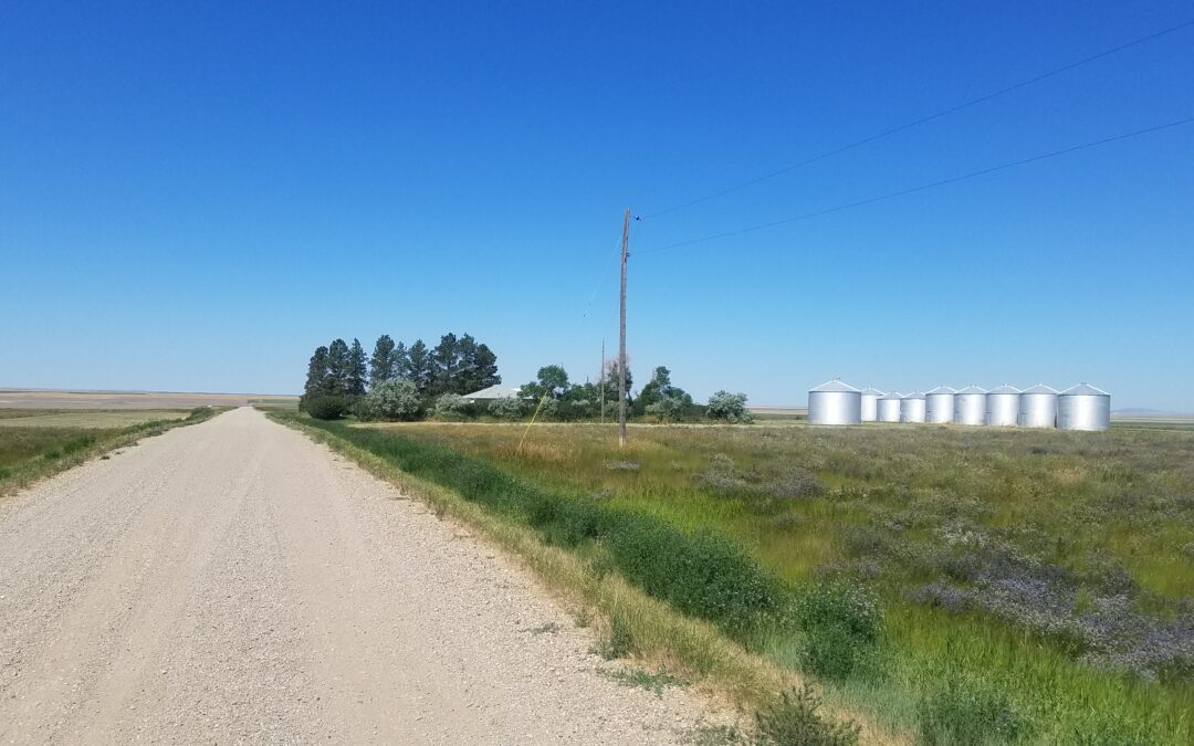 Chouteau County Farmstead