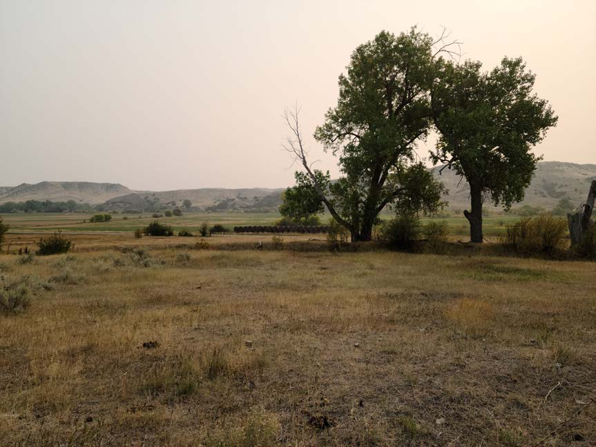 billings montana land for sale