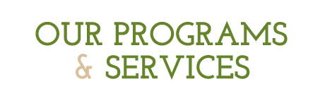 Our Programs and Services
