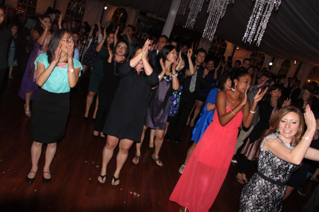 MY DJs Green Gables Reception Line Dance