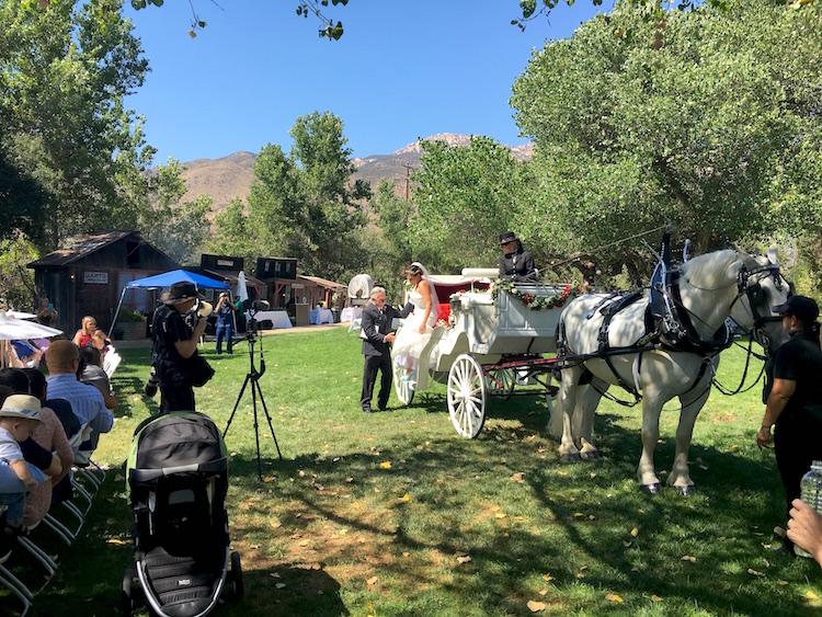 bride on carriage san diego