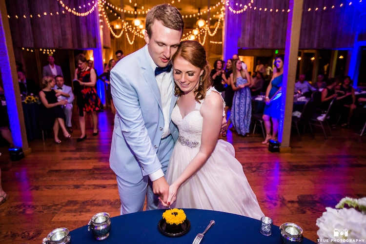 cake-cutting-ideas-copy