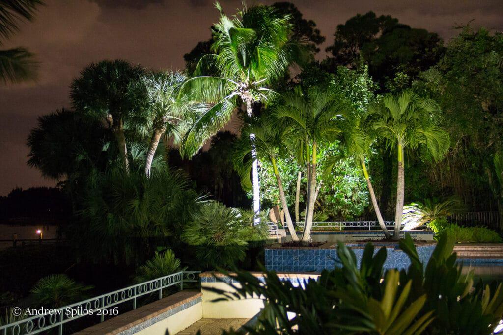 Electrician in Palm Beach