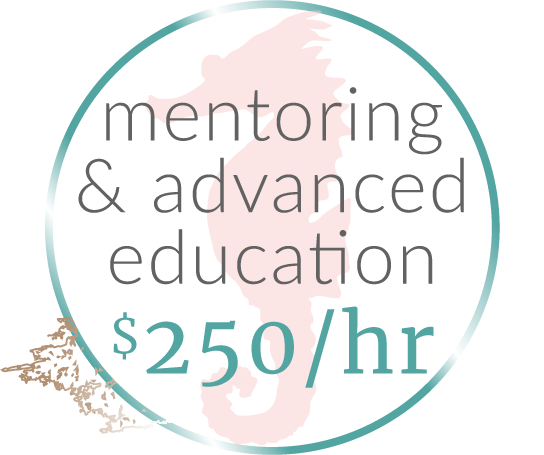 mentoring-education copy