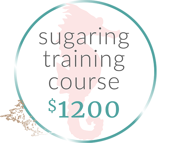 sugar-training-course-reverse