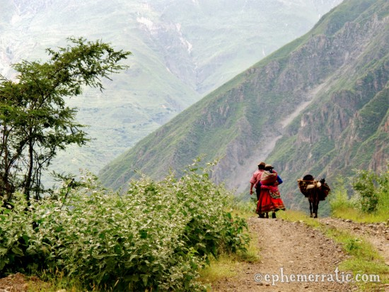 A couple walks home deep in Colca Canyon, Peru photo