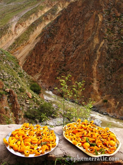 Trays of aji amarillo drying, Colca Canyon, Peru photo