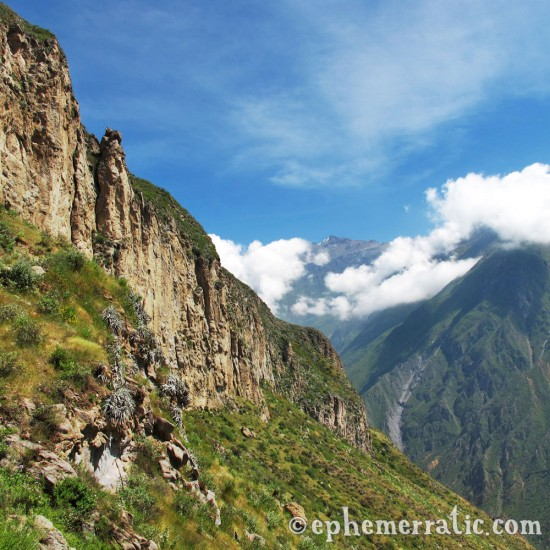 Steep views, Colca Canyon, Peru