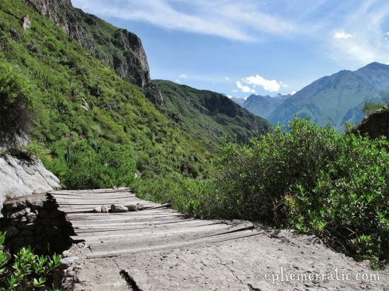Wooden bridge over the Rio Cabanaconde, Colca Canyon, Peru photo