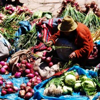 Onion seller at the Pisac Sunday Market, Peru photo
