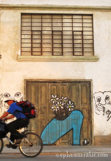 Shoe-as-vase graffiti, Barranco, Lima, Peru by Lauren Girardin