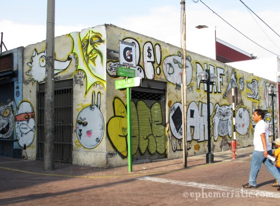 Turtle, wolf, rabbit, and more graffiti, Miraflores, Lima, Peru by Lauren Girardin