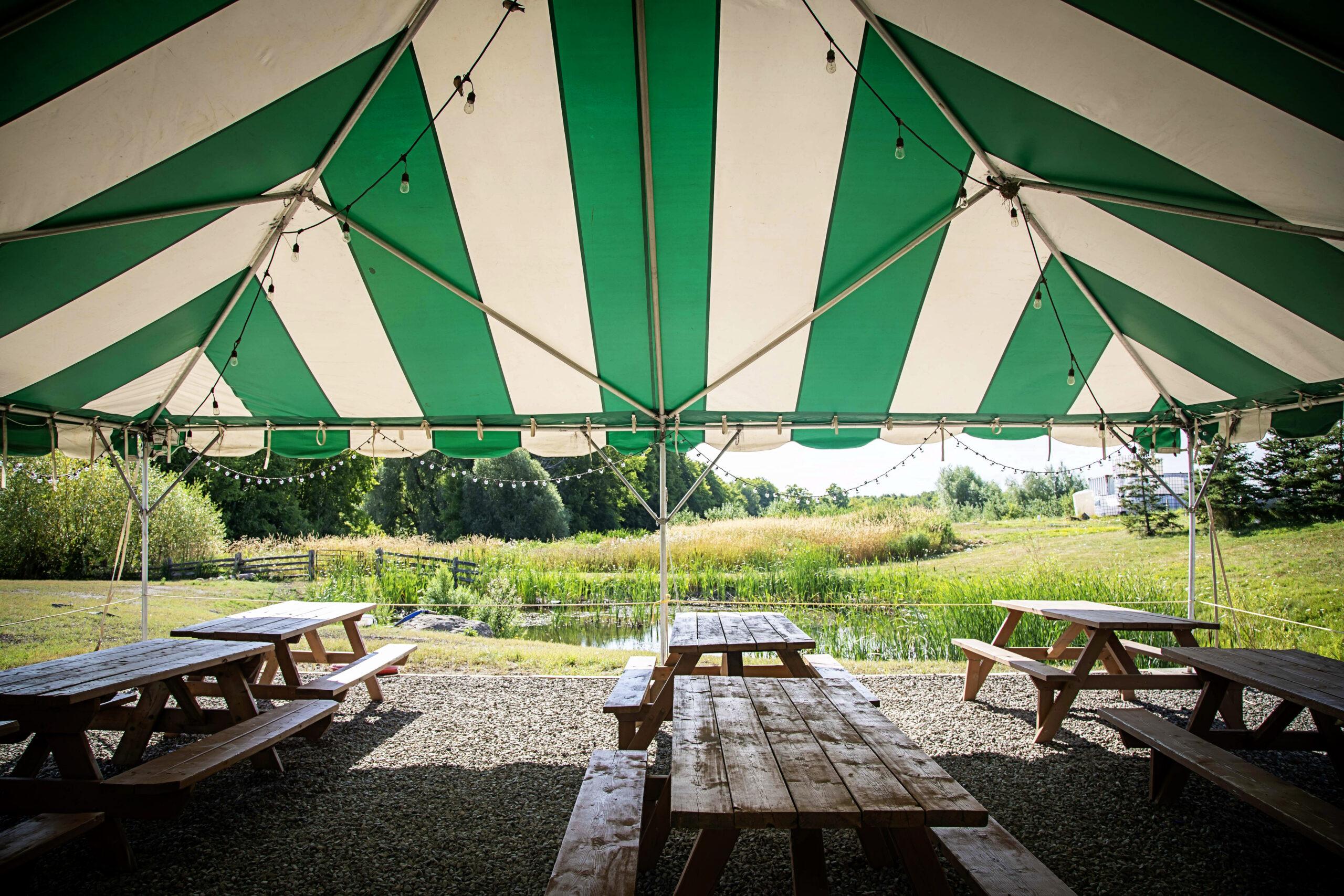 The Tent at Spirit Tree