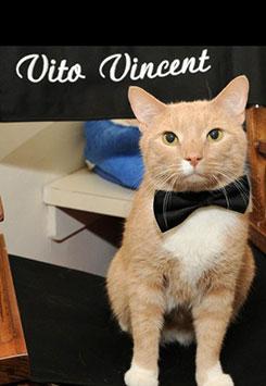 Vito Vincent