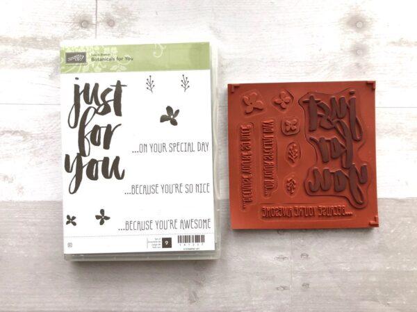 Stampin Up Retired Botanicals for You Stamp Set