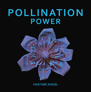 Pollination-Power_book_heather_angel