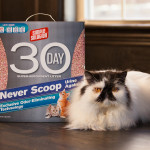 Simple Solution Cat Litter Review and Giveaway