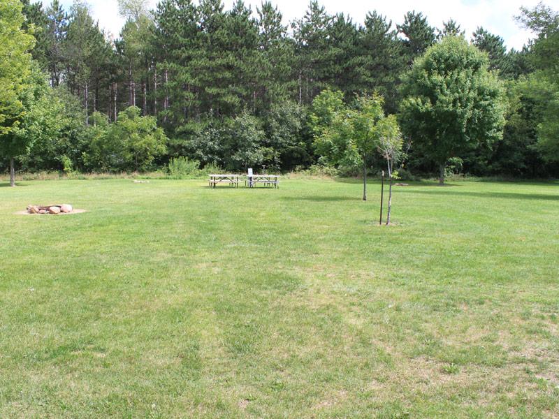 Campsite 206