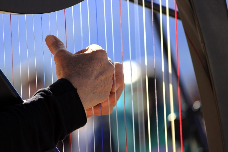 Close-up of a man playing a harp
