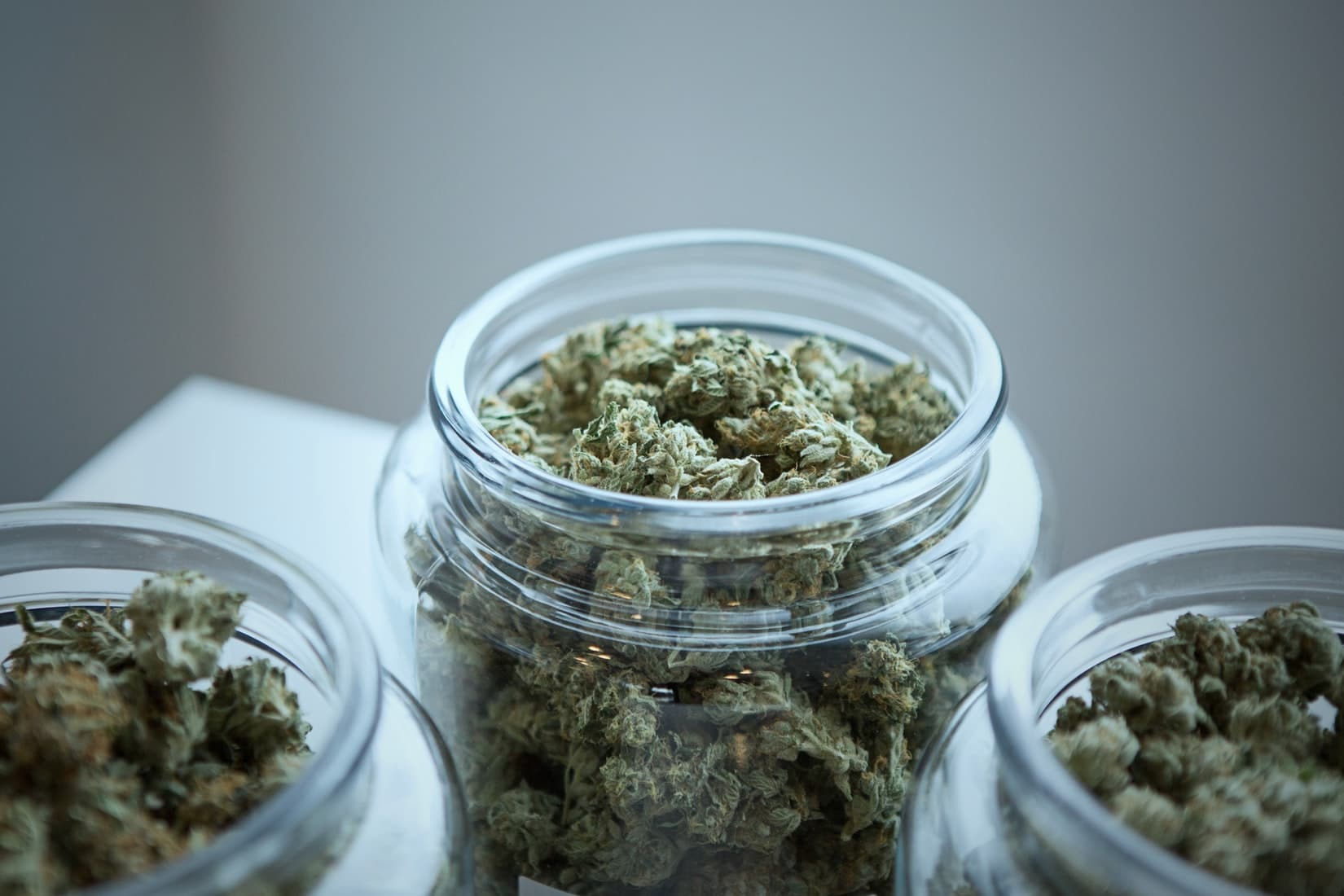 Nebraska University Is Latest School To Offer Cannabis Courses For Career-Minded Professionals