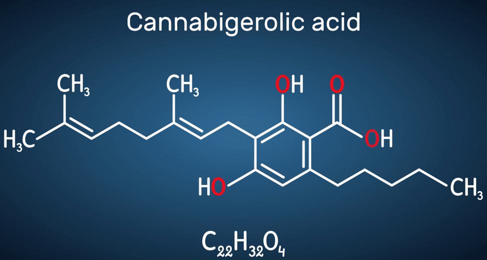 Acidic Cannabinoids (CBGA, CBDA and others)