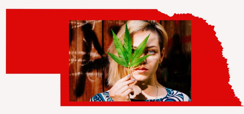 These Six Women Are Cannabis Pioneers In Nebraska