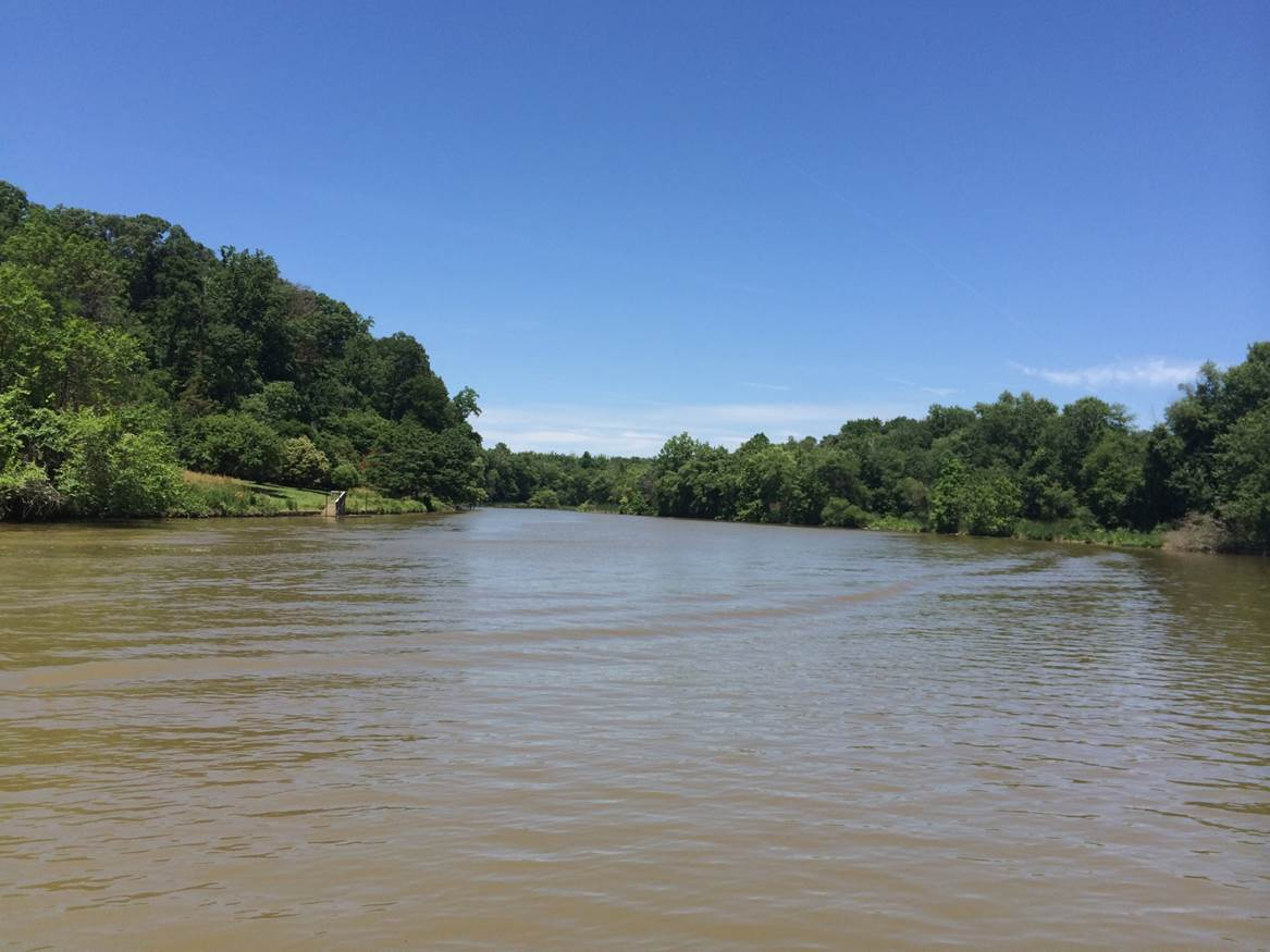 Anacostia River Clean Up