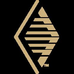 PinnacleAgency_Logo_Web_Favicon_Gold