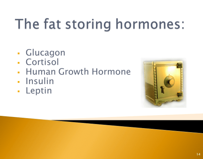 Hormones and Weight Loss - Fat Storing Hormones