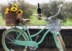 Beach Cruiser Bike with Chacewater Wine