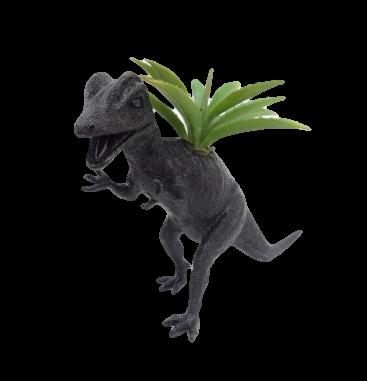 Dinoplanters