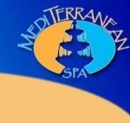 The Mediterranean Spa