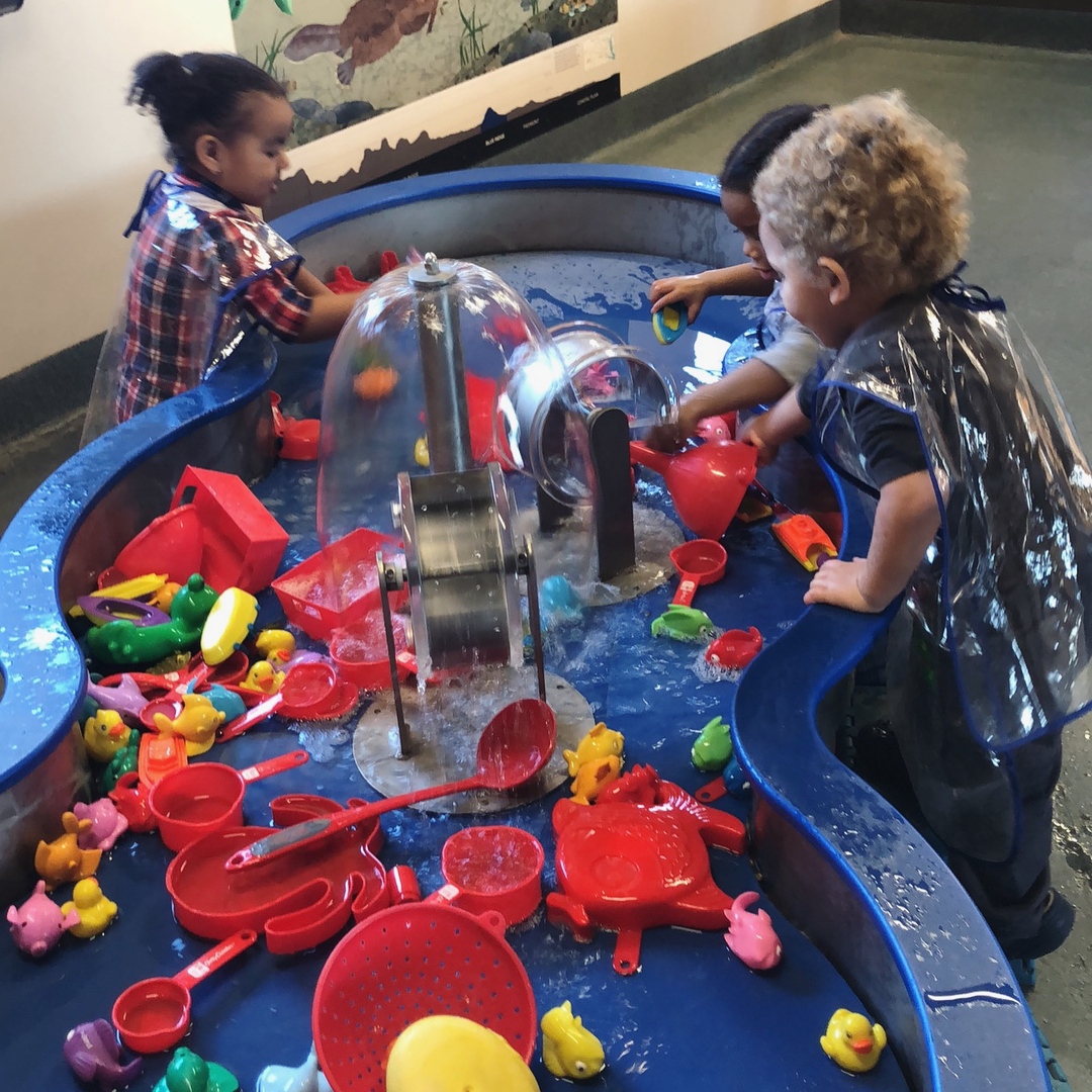 Kids playing at water table.