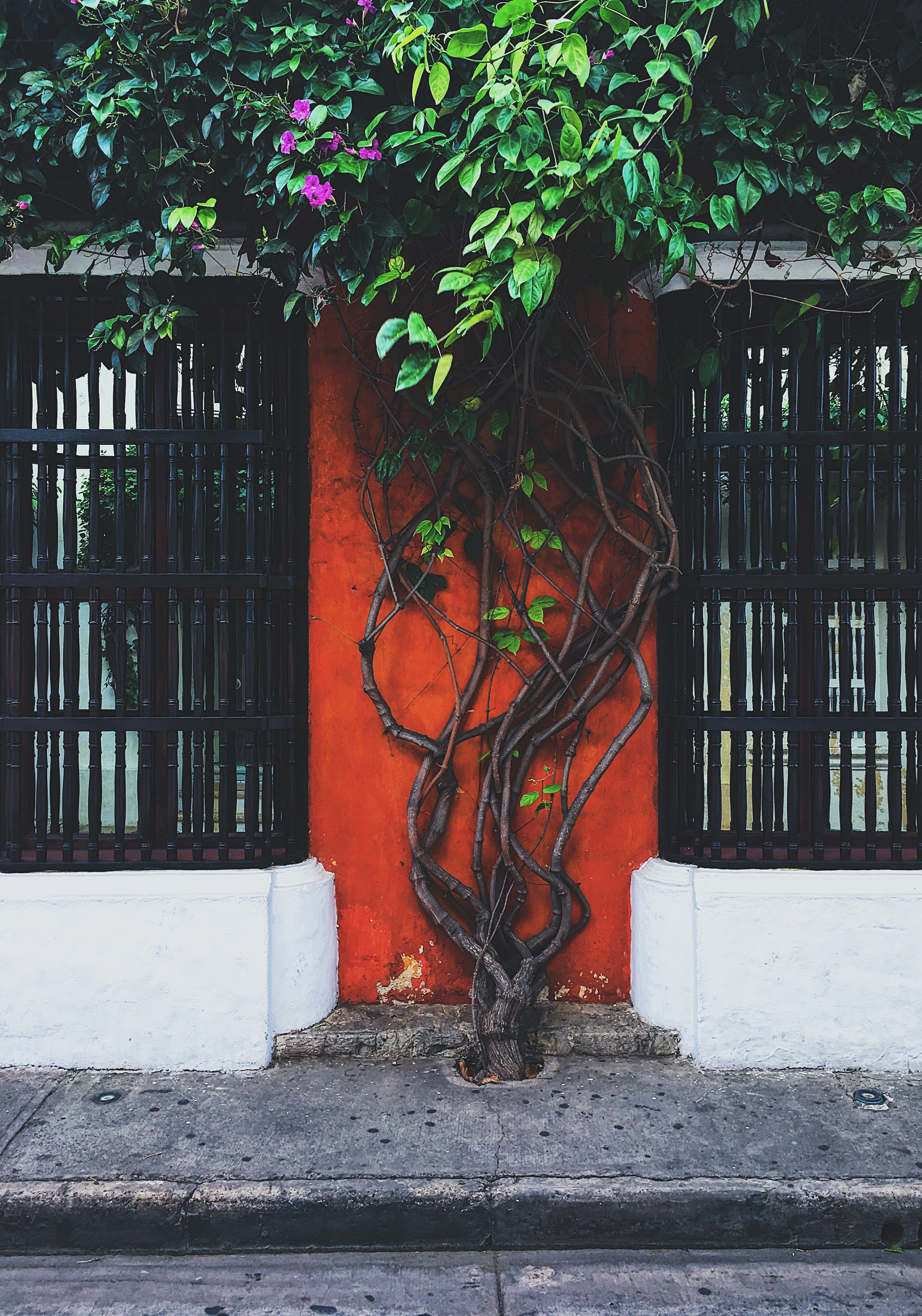 lcm-livecgothesminded-cartagena-colombia-walled city