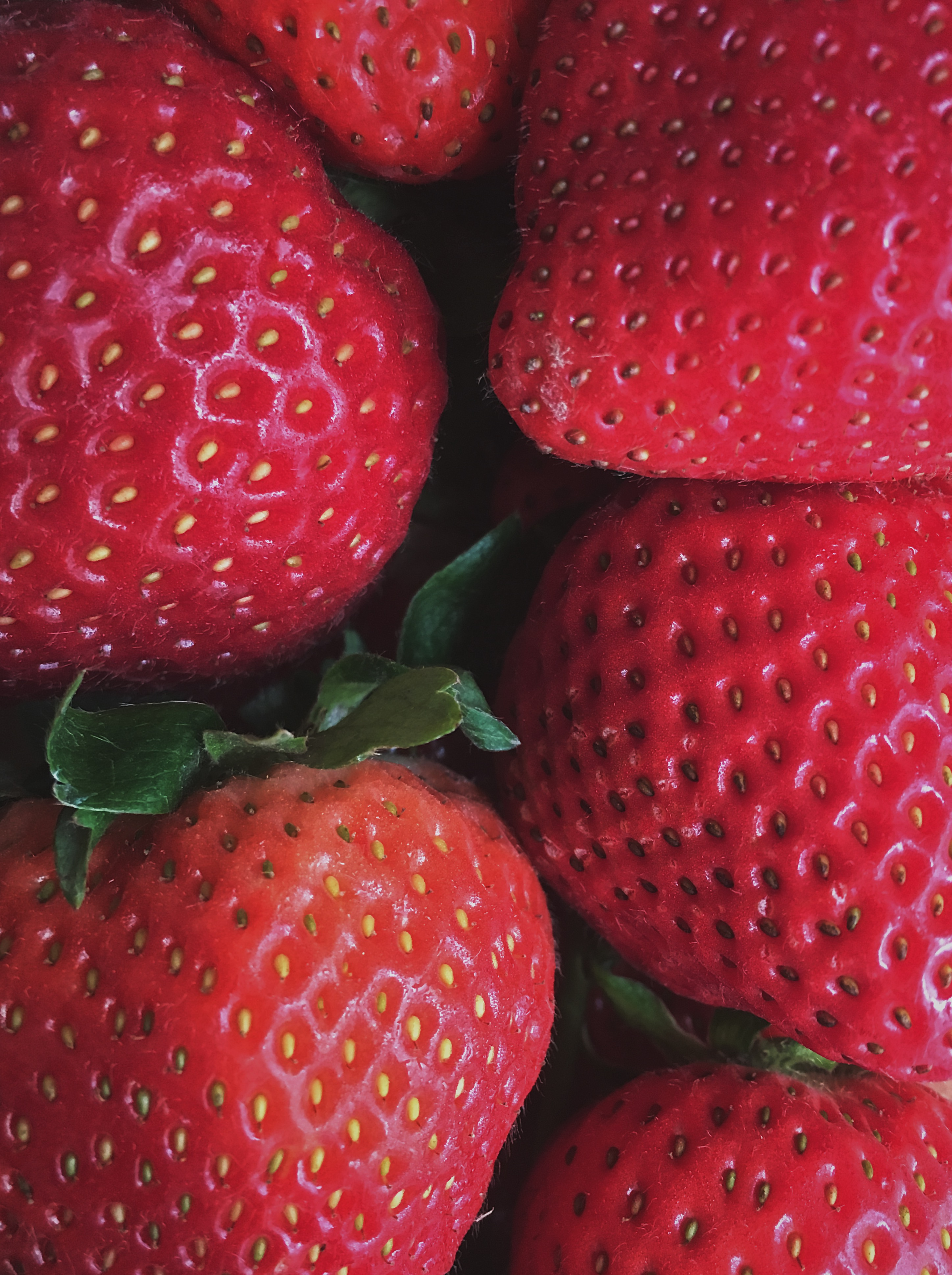 close up image of strawberries