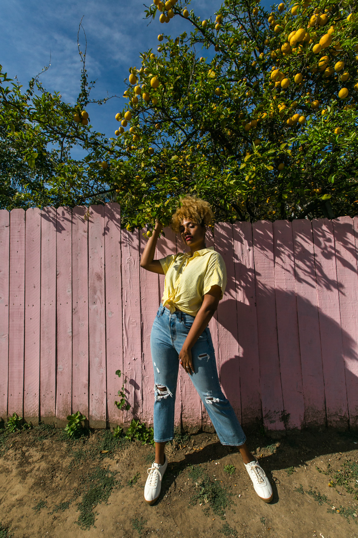 lemon tree-shadow play-yellow shirt-model-wear who you are-h&m shirt-pink fence-levis wedgie fit jeans