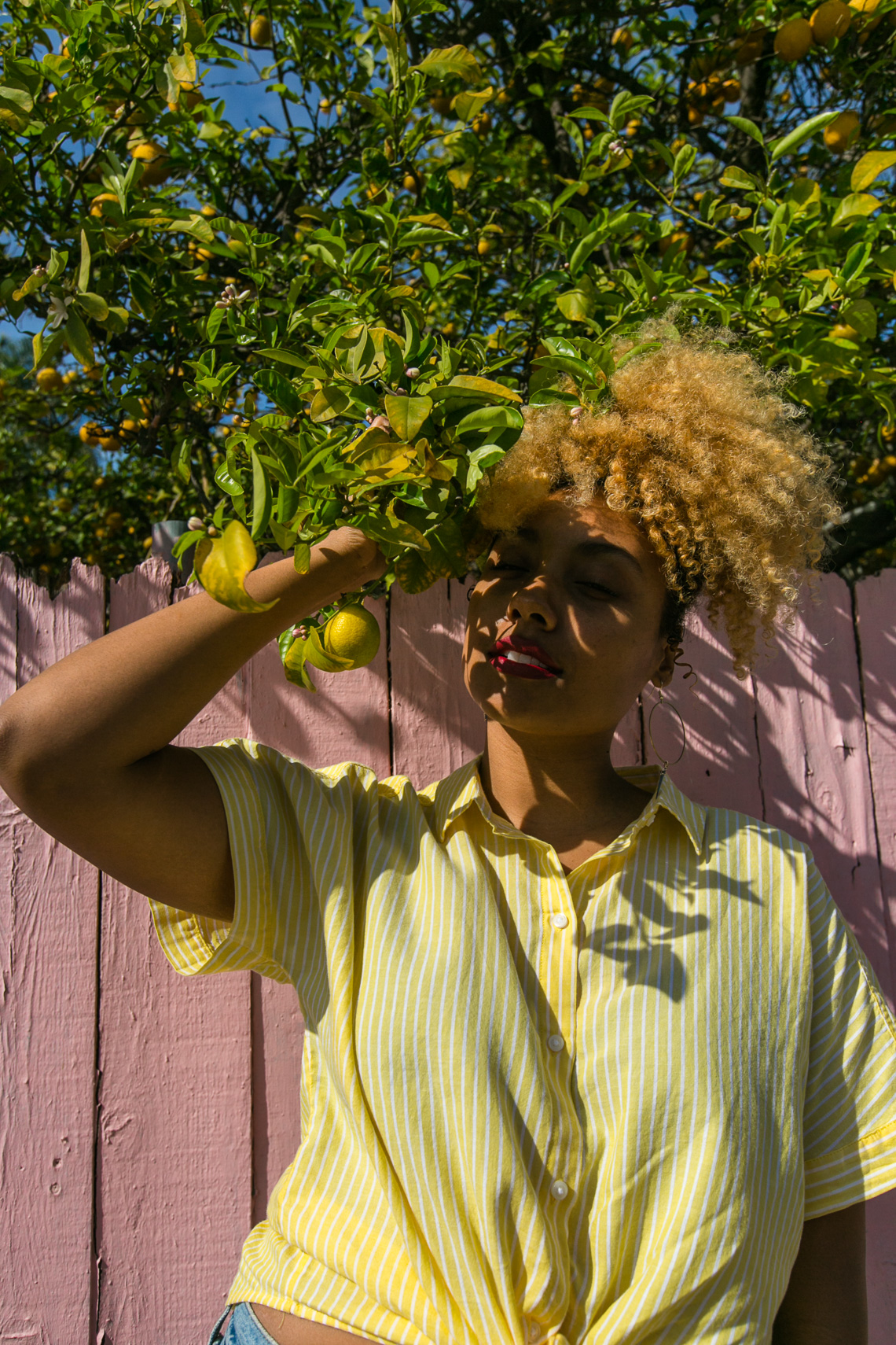 lemon tree-shadow play-yellow shirt-model-wear who you are-h&m shirt-pink fence