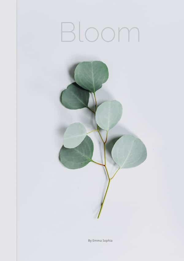 upcoming book