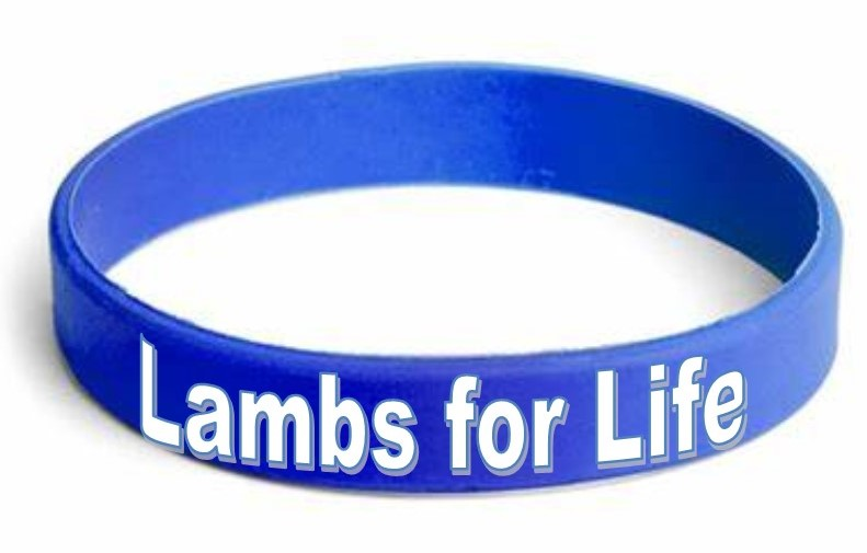 Childhood Cancer Lamby Bracelet