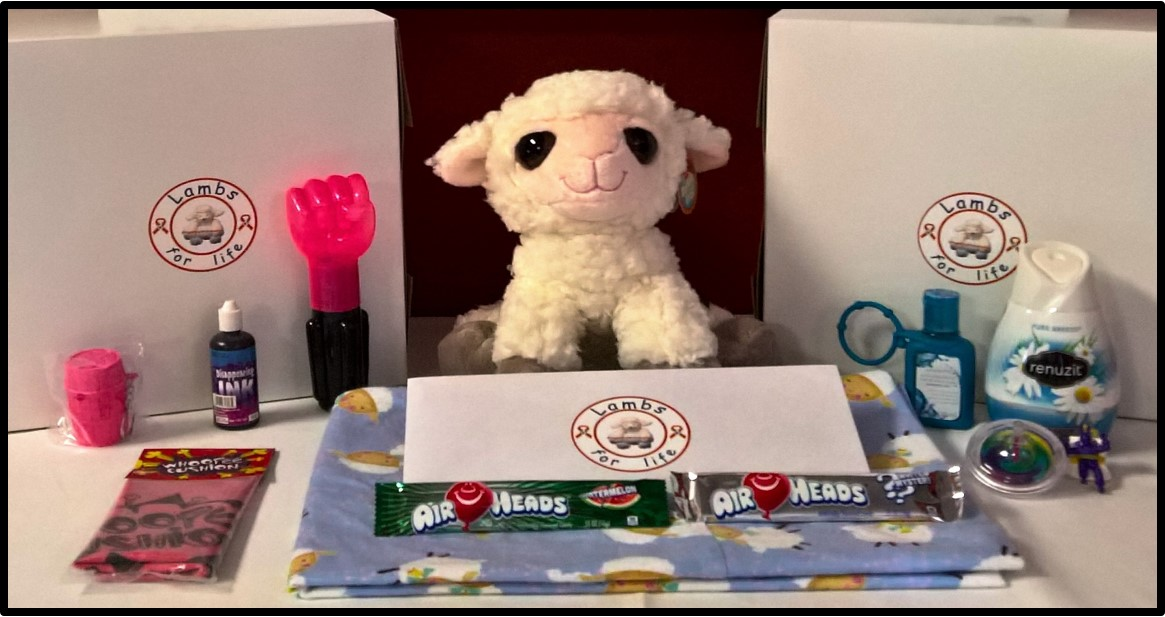 SPONSOR Lamby Packs for kids in cancer treatment