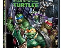 Batman vs TMNT