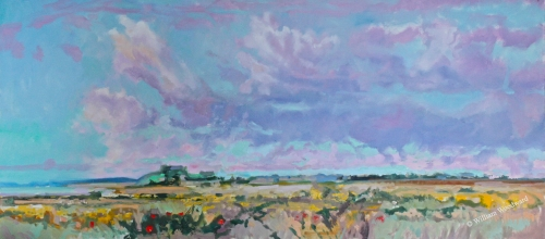 <h5>Near Pointe de Torche</h5><p>O:L 16 x 32 2012																																																																																																																																																																																																																																																																																</p>