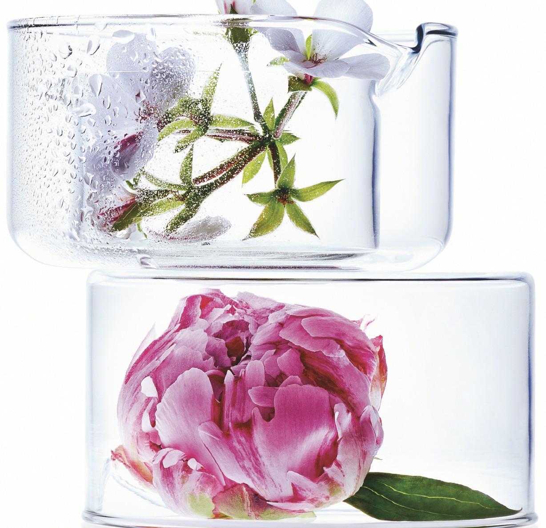 Rose Blossom Revitalizing Care By Annemarie Borlind